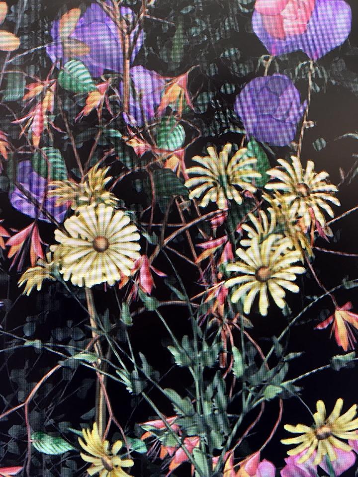 Jennifer-Steinkamp_Botanic-6_detail_web-(1).jpg